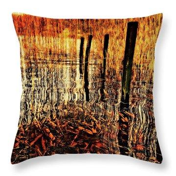 Golden Decay Throw Pillow by Meirion Matthias