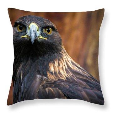 Golden Eagle 1 Throw Pillow