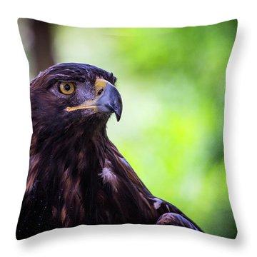 Golden Eagle 2 Throw Pillow