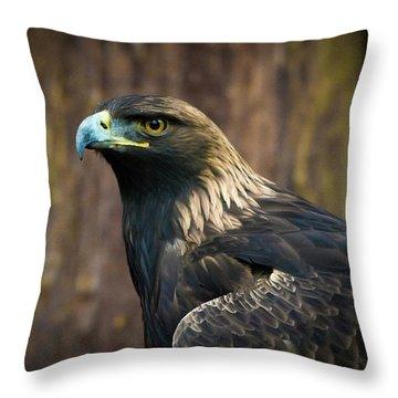 Golden Eagle 5 Throw Pillow
