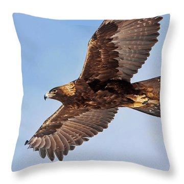 Golden Eagle Flight Throw Pillow