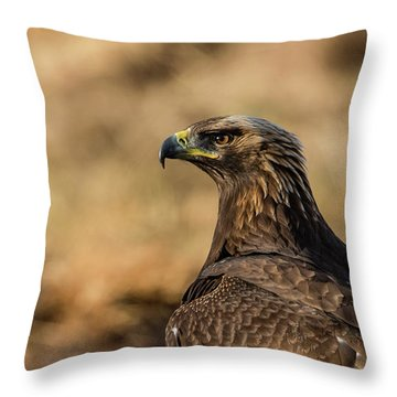 Golden Eagle Throw Pillow by Torbjorn Swenelius