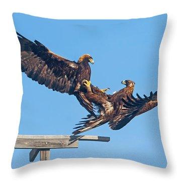 Golden Eagle Courtship Throw Pillow
