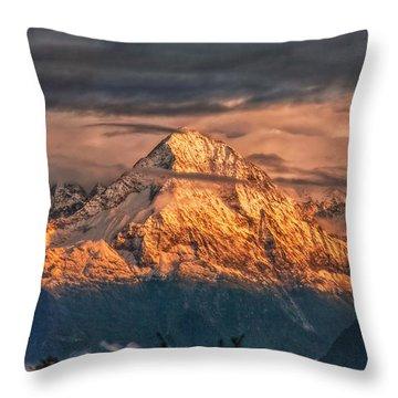 Golden Evening Sun Throw Pillow