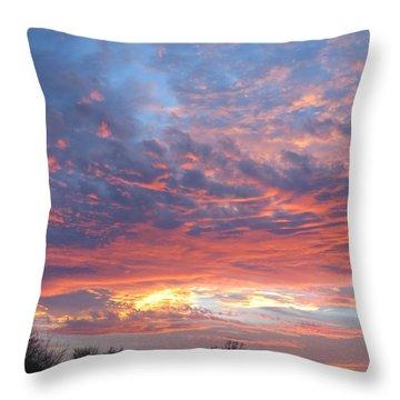 Golden Eye Landing In The Desert Throw Pillow