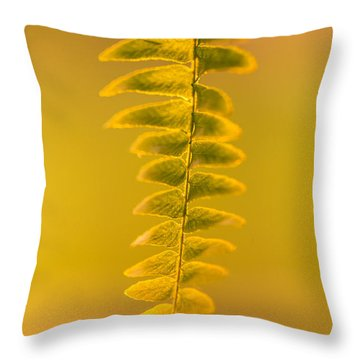 Golden Fern Throw Pillow