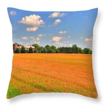 Golden  Field Throw Pillow by Kathleen Struckle