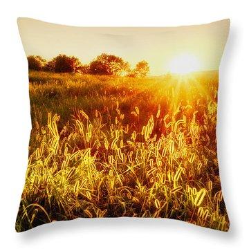 Throw Pillow featuring the photograph Golden Fields by Mark Miller