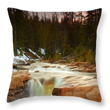 Throw Pillow featuring the photograph Golden Flow In The Upper Provo River. by Johnny Adolphson