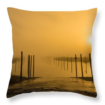 Golden Fog On The Nissequogue Throw Pillow
