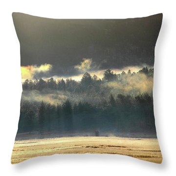 Throw Pillow featuring the photograph Golden Fog by Shane Bechler