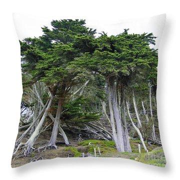 Golden Gate Sentinels Throw Pillow
