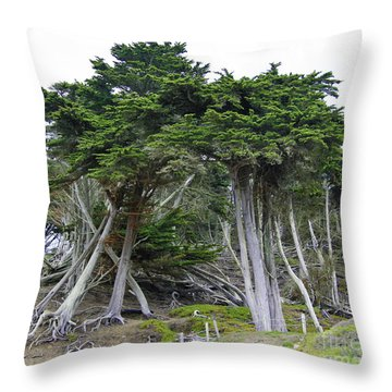 Golden Gate Sentinels Throw Pillow