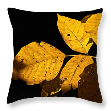 Golden Glow Throw Pillow by Christopher Holmes