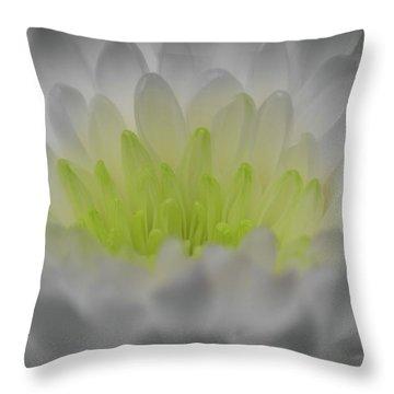 Golden Glow Throw Pillow