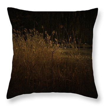 Throw Pillow featuring the photograph Golden Grass by Ryan Photography