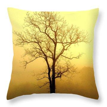 Golden Haze Throw Pillow by Marty Koch