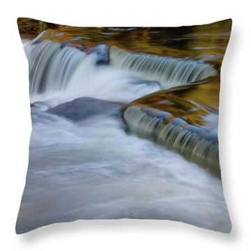 Throw Pillow featuring the photograph Golden by Heather Kenward