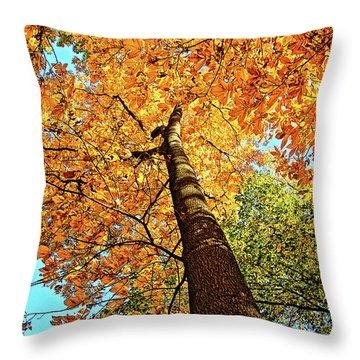Golden Hickory Throw Pillow