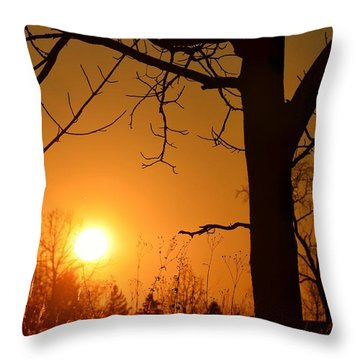 Golden Hour Daydreams Throw Pillow