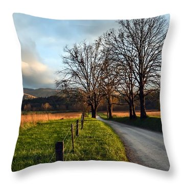 Golden Hour In The Cove Throw Pillow by Debbie Green