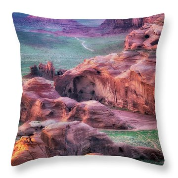 Golden Hour  Throw Pillow by Nicki Frates