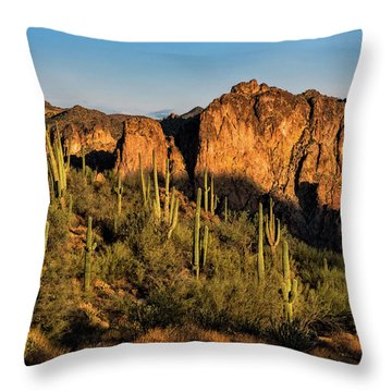 Throw Pillow featuring the photograph Golden Hour On Saguaro Hill  by Saija Lehtonen