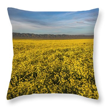 Golden Hour On The Plain Throw Pillow