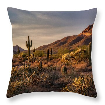 Throw Pillow featuring the photograph Golden Hour On The Usery  by Saija Lehtonen