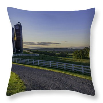 Golden Hour Silos Throw Pillow