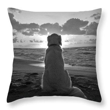 Golden Labrador Watching Sunset Throw Pillow