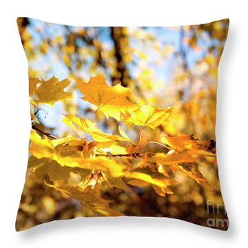 Throw Pillow featuring the photograph Golden Leaves by Ivy Ho
