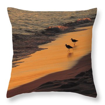 Golden Light At Sunset Throw Pillow