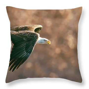Golden Light Throw Pillow by Kelly Marquardt