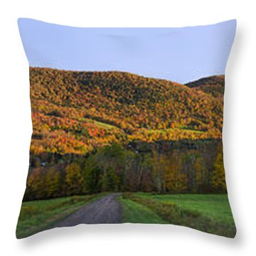Throw Pillow featuring the photograph Golden Light On The Catskills by Mark Papke