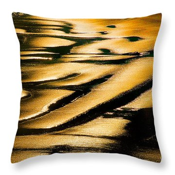 Golden Light On The Wet Sand, Point Reyes National Seashore Mar Throw Pillow by Wernher Krutein