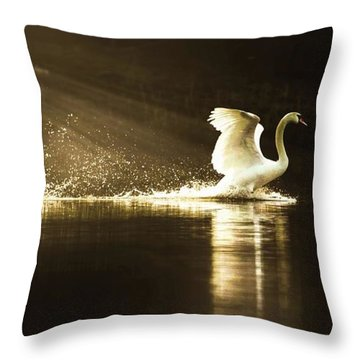golden Light Throw Pillow by Rose-Marie Karlsen