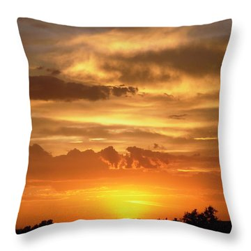 Golden Light Throw Pillow by Stephanie Moore
