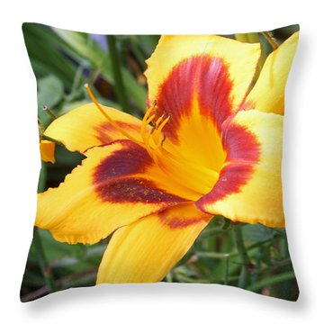 Golden Lily Throw Pillow by Ellen Tully