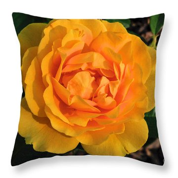 Throw Pillow featuring the photograph Golden Memories by Sandy Molinaro