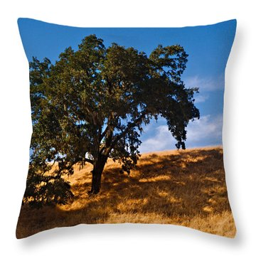 Throw Pillow featuring the photograph Golden Moments by Laura Ragland