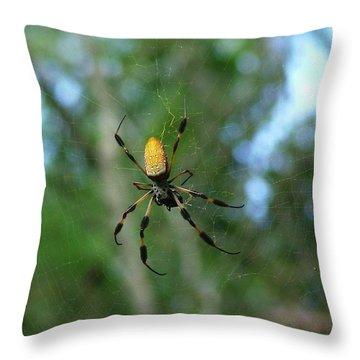 Golden Orb Weaver 1 Throw Pillow by Bruce W Krucke
