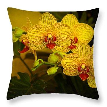Golden Orchids Throw Pillow