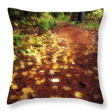 Throw Pillow featuring the photograph Golden Path by Cat Connor