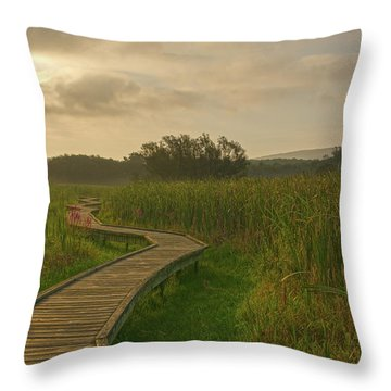 Golden Pathway To A Foggy Sun Throw Pillow