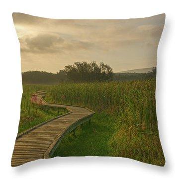 Golden Pathway To A Foggy Sun Throw Pillow