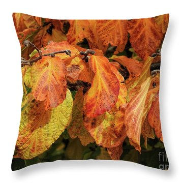 Throw Pillow featuring the photograph Golden by Peggy Hughes