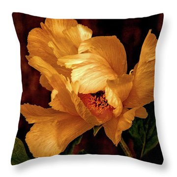 Throw Pillow featuring the photograph Golden Peony by Julie Palencia