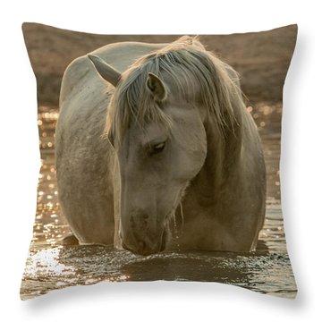 Golden Pond Mare Throw Pillow