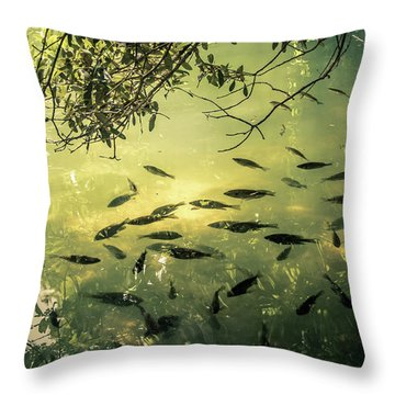 Golden Pond With Fish Throw Pillow